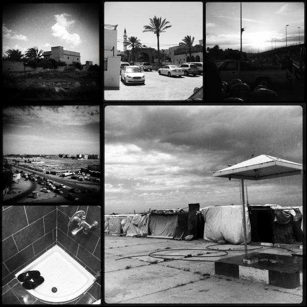 Libya Mono