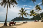 Welcome to Maracas