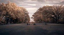 Infrared Park v2