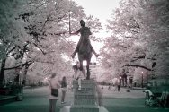 Infrared Statue