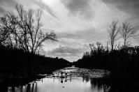 Wetlands under threat?