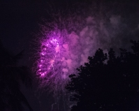 Purple Fire